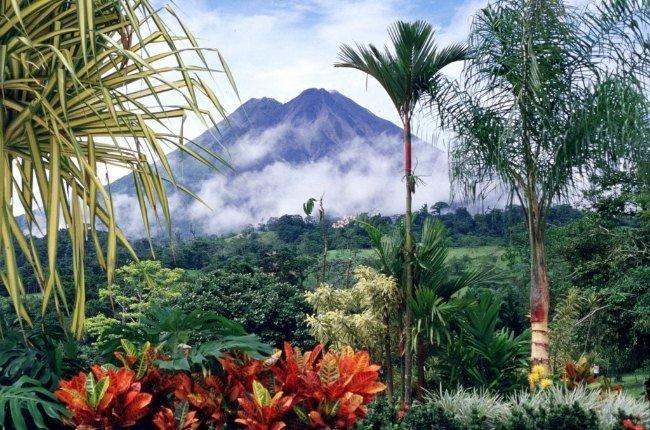 Le volcan Arenal au loin, derrière une végétation dense