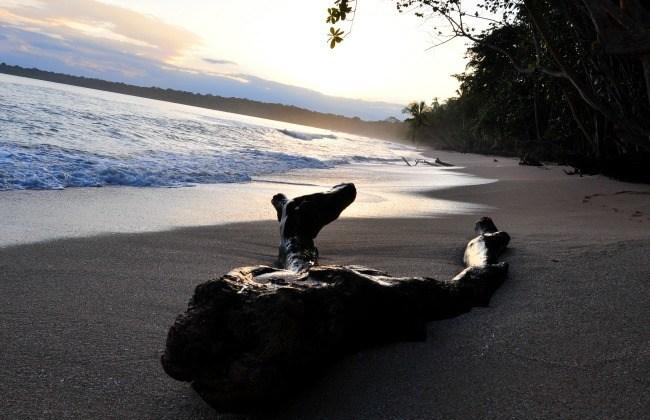 Cahuita, plus belles plages du Costa Rica